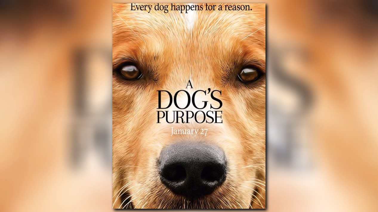 A Dog S Purpose Disturbing Video