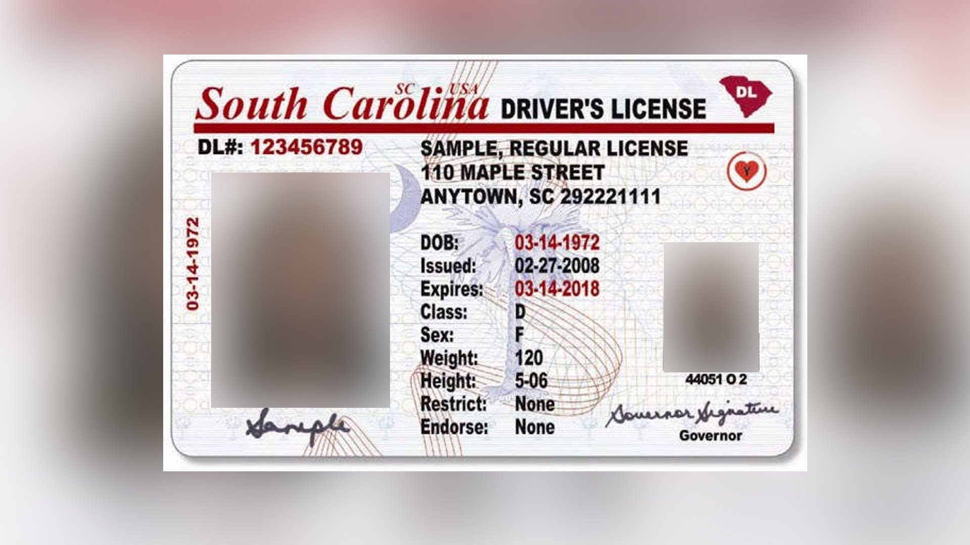an analysis of carolina drivers license system North carolina division of motor vehicles  do not limit voluntary use of a baiid by a north carolina driver not  and/or drivers license restoration agreements .