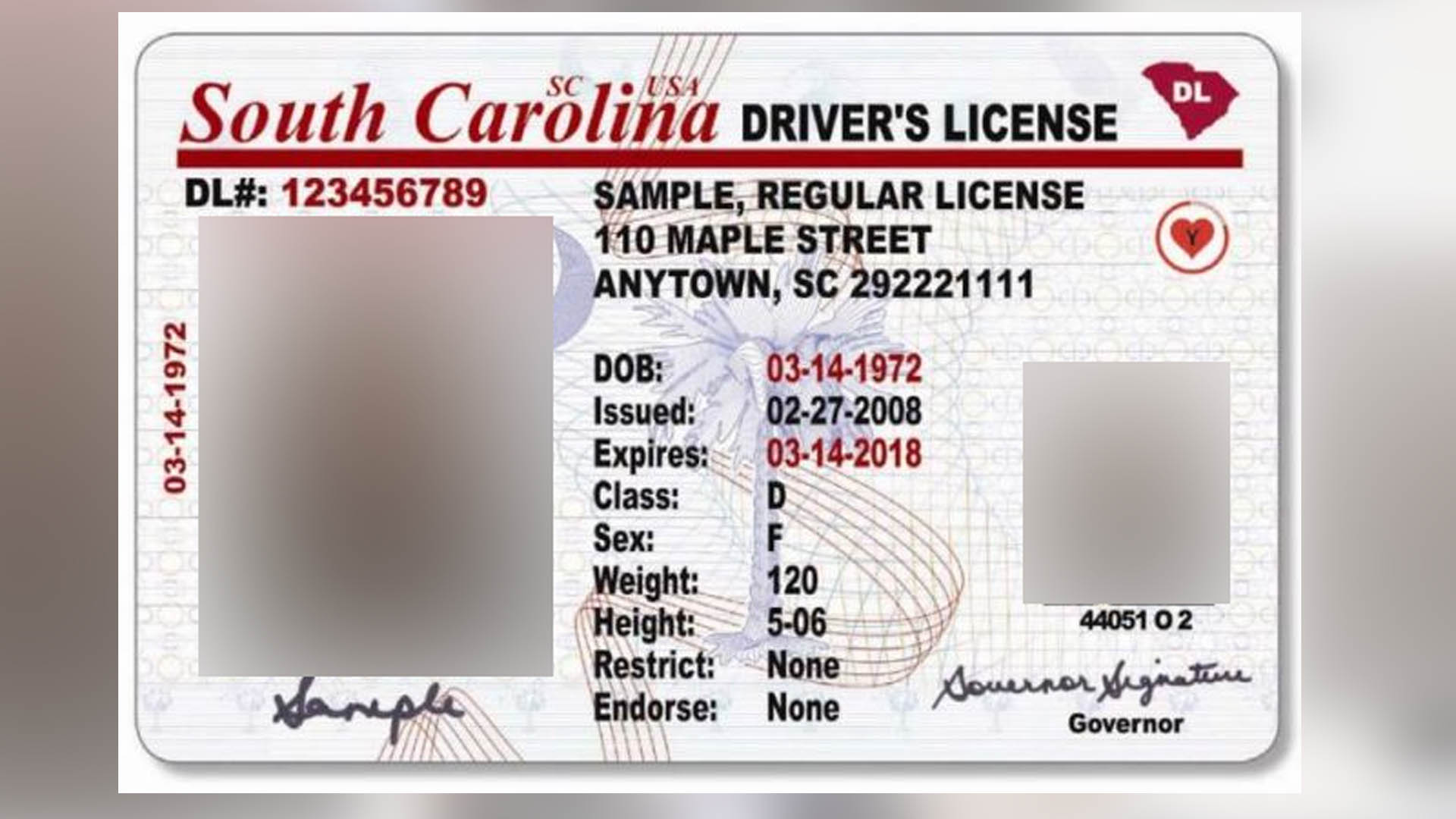 Sc begins accepting documents for real id compliant for Department of motor vehicles columbia sc